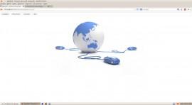 Software Web De Gestão De Empresas Em Java Com Fontes