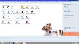 Sistema De Petshop E Clínica Veterinária